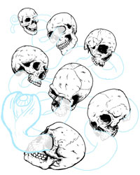 Paint the Stars Skull Drawing