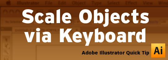 scale-vector-objects-via-keyboard-header